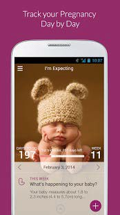 Track Your Pregnancy Day by Day